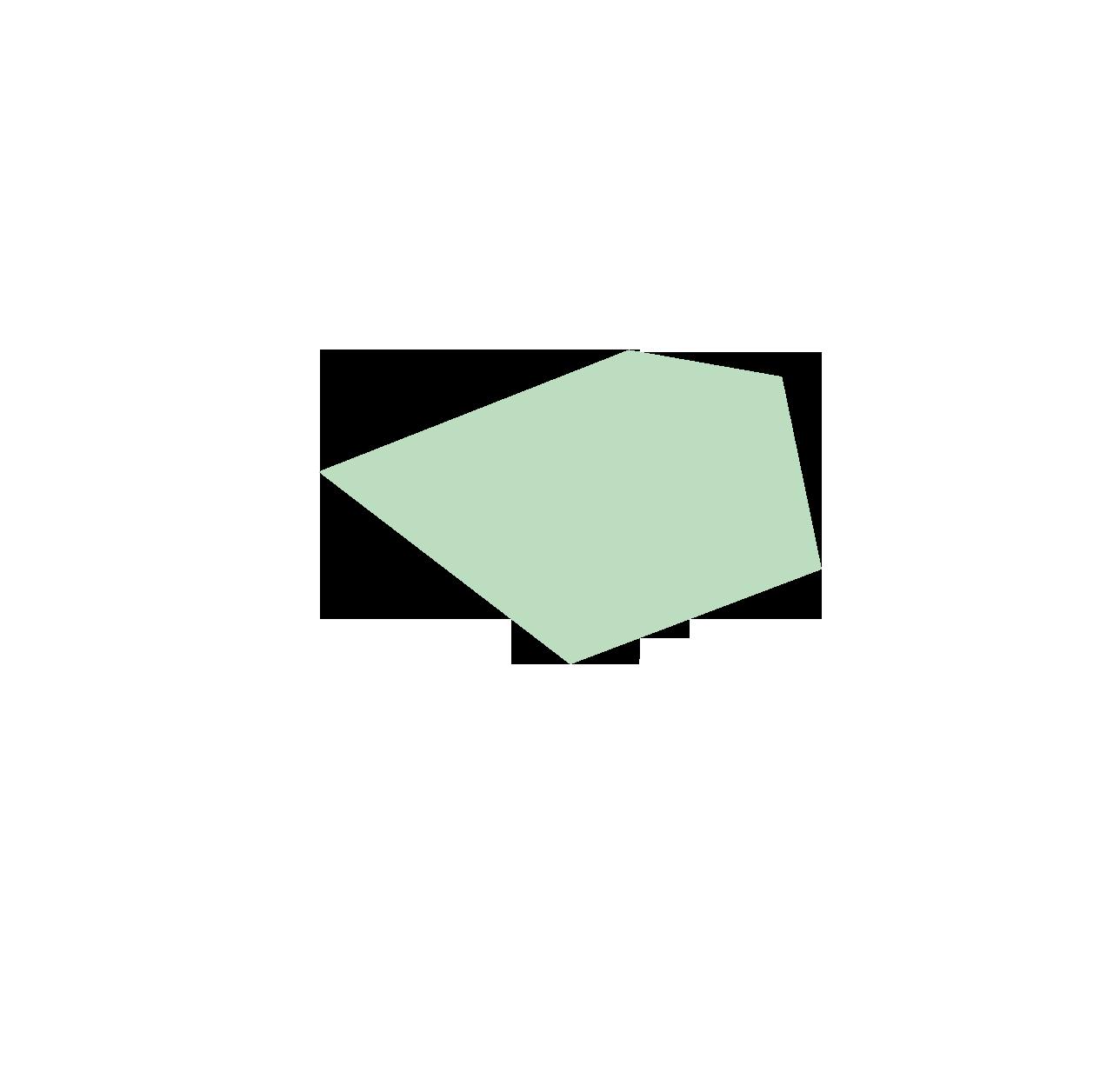 nyt-turtles-licht-6